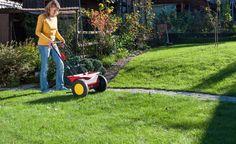 Vertikutieren, säen, mähen, düngen - ein schöner Rasen kann sehr arbeitsintensiv…
