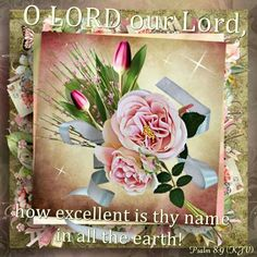 Excellent is the lord.