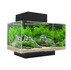 Fluval Edge Tropical Fish Tank Aquarium 23L Black