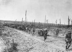 WW1, 17 Sept 1916. Delville Wood Ammunition limbers of 35th Field Battery. © IWM