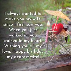 I always wanted to make you my wife since I first saw you. When you just walked in, you walked in my heart. Birthday Wishes For Wife, Happy Birthday Me, Romantic Quotes, You And I, Messages, Make It Yourself, My Love, Heart, How To Make