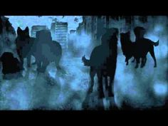 Survivors #1: The Empty City by Erin Hunter - Trailer