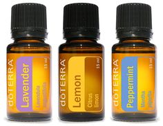 doTERRA Beginner's Trio Essential Oils -- Awesome product. Click the image : lemon essential oil