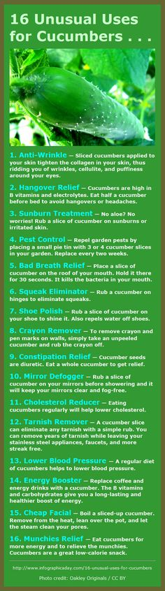 16 Great Uses for Cucumbers – They're not just for eating! - Includes fitness and beauty tips . And not one tip about sex! - Diy Healthy Home Remedies Herbal Remedies, Health Remedies, Home Remedies, Natural Remedies, Info Board, Tips And Tricks, Makeup Tricks, Health And Beauty Tips, Natural Healing