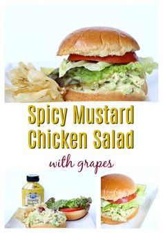 Healthy, delicious and easy to make you say? Grab this Spicy Mustard Chicken Salad with grapes recipe and save it, because you will be making it again! Chicken Salad With Grapes, Chicken Salad Recipes, Healthy Salad Recipes, Vegan Recipes Easy, Chicken Salads, Amazing Recipes, Delicious Recipes, Grape Recipes, Wine Recipes