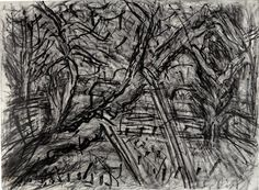 Leon Kossoff This more abstract image by Leon Kossoff reminds me of my drawing of the weeping fig Leon Kossoff, Nature Sketch, Expressive Art, Abstract Images, Love Drawings, Mark Making, Drawing Techniques, Van Gogh, Art Sketches