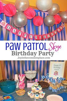 Paw Patrol Skye Birthday Party