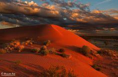 Desert Storm by Alexander Riek - Photo 87908793 / 500px