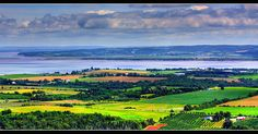 The Lookoff, Blomidon, NS.  A great view of the Annapolis Valley.  The farm below grows broccoli (my favorite!).
