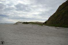 Nicht nur der Pakiri Beach ist unglaublich schön, sondern auch der Campingplatz hat das eine oder anderen nette zu bieten.