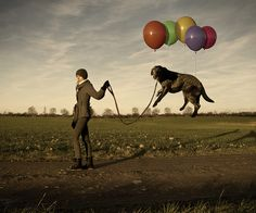 """finding ways to lighten the load of the Black Dog.    (""""Lazy Dogs"""" by Erik Johansson)"""