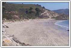 Dog Friendly and Driving on the Beach: Avila Beach Morro Bay Central norcal