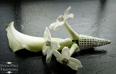 simple classy grooms boutonniere - white calla and stephanotis with jewel centers in a silver magnetic bout holder