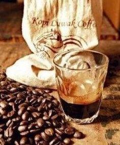 Cafe Vietnam Weasel Coffee Ca Phe Chon
