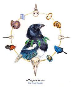 Magdelena the mean magpie by balaa.deviantart.com on @DeviantArt