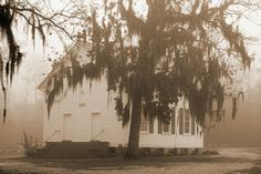 Reaves Chapel in Dry Fork Alabama.(It looks super artsy cause it's in sepia...)