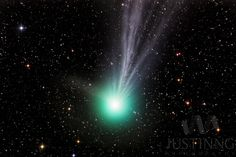 Astrophotographer Justin Ng did a 40-minute exposure to capture this brilliant view of Comet Lovejoy... - Justin Ng