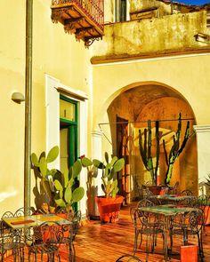 """Terrazza con Giardino - Garden Terrace"" - Giardino di Minerva - Salerno  #photobydperry #loves_united_lazio ##wp #Italia_super_pics #ig_italy #ig_salerno #going_into_details #loves_united_roma #spgitaly #igerslazio #loves_united_places #ilikeitaly #italia_dev #pocket_Italy #gallery_of_all #total_Italy #loves_united_team #yallerslazio  #italy_hidden_gem #igw_italy #fdnf #lazio #ig_lazio_  #ig_lazio #inrhome #nikontoday #unlimitedrome #my_rome  #loves_united_italia_ #thehub_italia"