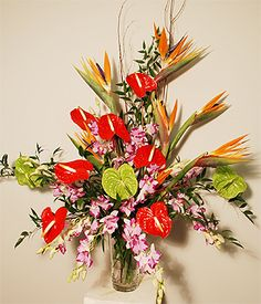 Exotic Tropical Flowers Abound in this Vase Design Featuring Birds of Paradisee, Red Hawaiian Anthuriums, Purple Dendrobium Orchids and Tropical Foliages Accented with Natural Curly Willow Branches. Proudly stands 40 inches tall by 29 inches wide! $199.95    Available for Same Day Local Delivery    Purchase at any Norfolk Florist location   Also Available for Same Day Nationwide Delivery