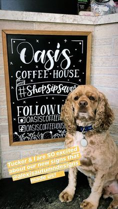 Hello! I am Alexis Huckbay, a graphic designer with a love of hand-lettering and typography. Check out my portfolio! Chalkboard Lettering, Chalkboard Signs, Chalk Artist, Calligraphy Words, New Times, Logo Sign, Dog Modeling, Sidewalk Chalk, Hanging Signs