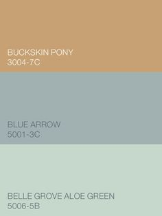 From the Valspar Comfort Zone palette, Buckskin Pony 3004-7C, Blue Arrow 5001-3C and Belle Grove Aloe Green 5006-5B are soft and shadowed shades that pair perfectly and play well on their own. Available at Lowe's.