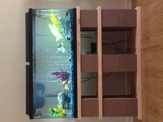 Our DIY 55gal fish tank stand.....made out of cinder blocks, wood and a little spray paint!!!!! Love love LOVE IT!!!!!!