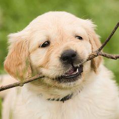 My first stick ❤️
