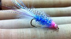 This hot little pattern shines bright in the water on dark and rainy day Fall days. Fishing this fly is a lot of fun because Coho absolutely crush it.