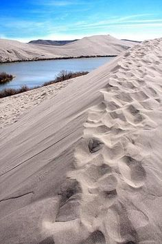 Bruneau Sand Dunes State Park, Idaho, 45 min drive from Boise, great day trip for picnics and hiking ~ site of North America's highest single-structured sand dune which is approximately 470 feet (140 m) high.  Photo: John Baker