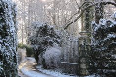 ❝I have spread my dreams under your feet. Tread softly because you tread on my dreams. Winter Walk, Winter Snow, Winter Time, Imperial Dreams, Romantic Scenes, Chronicles Of Narnia, Garden Types, Adventure Is Out There, Heaven On Earth