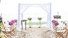 A draped canopy and directors chairs