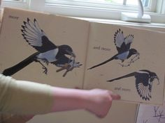 """""""More"""" by I. C. Springman and Brian Lies - make paper plate bird nests"""
