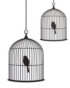 BIRD CAGE  wall sticker.  Have you got a narrow strip of wall and don't know what to do with it? ... perfect.