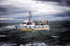 Bristol Bay 7/10/2015: Crew of the F/V Seahawk braves 60 mph gusts to put a few more sockeye aboard in Egegik.