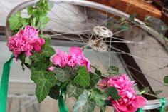 Bujori pe bicicleta Bicycle Wedding, Wedding Inspiration, Plants, Planters, Plant, Bike Wedding, Planting