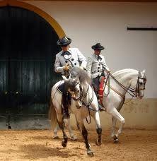 280 Ideeën Over Andalouse Paarden Spaanse Rijschool In 2021 Paarden Spaans Lippizaner