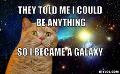 awesome-cat-meme-generator-they-told-me-i-could-be-anything-so-i-became-a-galaxy-fba424.jpg (510×319)