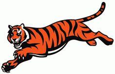 NFL Cincinnati Bengals  Alternate Logo (1997 - Present)