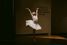 The Orlando Ballet at the Art of Medicine Gala - October 2017 - Orlando Museum of Art Orlando Museum Of Art, Traumatic Brain Injury, October 20, Foundation, Medicine, Ballet, Ballet Dance, Medical, Dance Ballet