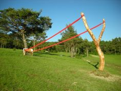 More recent installations provide novel ways for us to reconsider our own environment - like her dramatic, if somewhat comical slingshot composed of a large wishbone-shaped tree branch and a regular park bench.