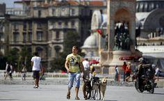 Um homem passeia com cachorros na praça Taksim, em Istambul; manifestantes foram retirados do local durante o final de semana. (Foto: Marko Djurica/Reuters)