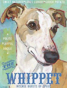 """Whippet No. 2 - Art Print 8.5x11"""" - etsy site for greeting cards!"""