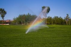 A sprinkler system installation for Toronto homes promotes efficient water & energy management while keeping lawns lush. Call Augusta Green Sprinklers to learn about our products & services: (416) 227-1666. Sprinkler System Installation, Water Energy, Water Day, Sprinklers, Water Conservation, Lawns, Irrigation, Lush, Saving Money