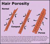 あなたの髪にヘアタイピングを使用する方法 - #coarsehairtexture #あなたの髪にヘアタイピングを使用する方法 Hair Porosity, Coarse Hair, Hair Type