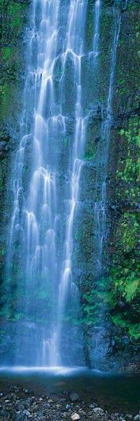 ✯ Waimoku Falls @ Maui, Hawaii © Peter Lik Fine Art Photography ✯Reminds me of when I was a kid, swimming in these falls Peter Lik Photography, Nature Photography, L'or Bleu, Places To Travel, Places To See, Autumn Lake, Hawaiian Art, Amazing Nature, National Parks
