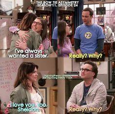 Big bang, Amy,Sheldon,his sister and Leonard Source by month meme Big Bang Memes, Big Bang Theory Quotes, Big Bang Theory Funny, The Big Band Theory, Amy, Funny Memes, Hilarious, Memes Humor, Funny Quotes