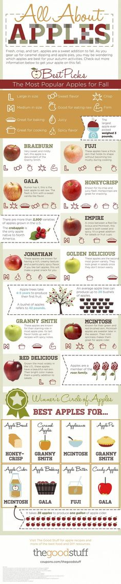 All About Apples: The Best Types of Apples For Your Recipes (Infographic) (Favorite Desserts Baking)