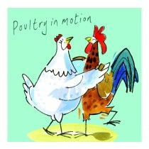 Clinton Banbury Dancing Poultry in Motion Chicken Card