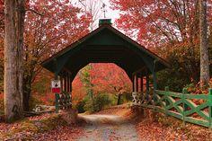 Fall in Blue Ridge, Georgia