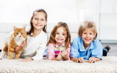 10 Things To Keep Cats And Children Friends